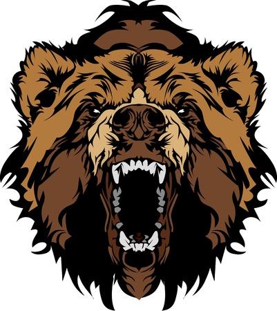 oso caricatura: Oso grizzly mascota cabeza vectorial