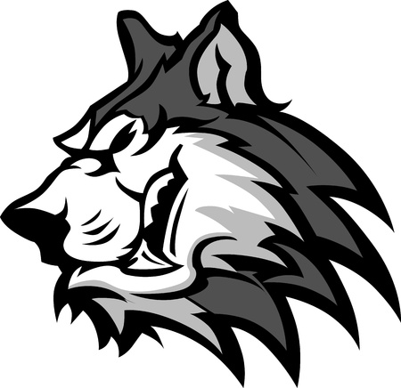 snarling: Husky Dog Head Graphic Team Mascot Vector Image Illustration