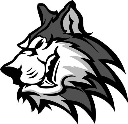 huskies: Husky perro jefe equipo mascota Vector imagen gr�fica