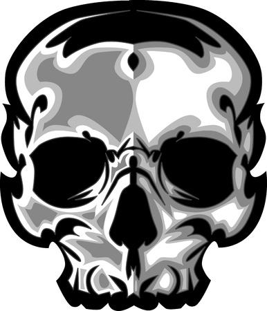 calavera: Ilustraci�n del cr�neo imagen vectorial Vectores