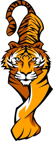 Prowling Tiger Body Vector Mascot Graphic Image