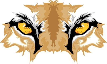 Graphic-Team Mascot Image of Cougar Augen Illustration