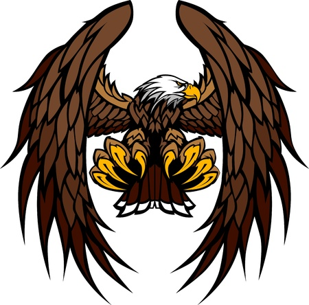 eagle flying: Flying Eagle with Wings and Talons Graphic Mascot Vector Image Illustration