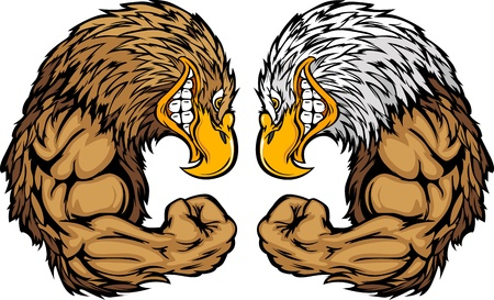 Cartoon Afbeelding van een Bald Eagle en Golden Eagle en buigen Arms Stock Illustratie