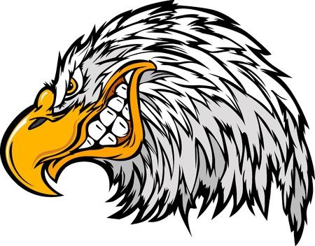 cartoon eagle: Eagle Head Graphic Mascot Cartoon Image