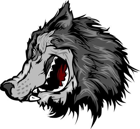lobo feroz: Imagen de la mascota de dibujos animados de una cabeza de lobo gris
