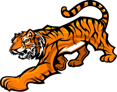 Graphic Mascot Vector Image of a Tiger Body Vector