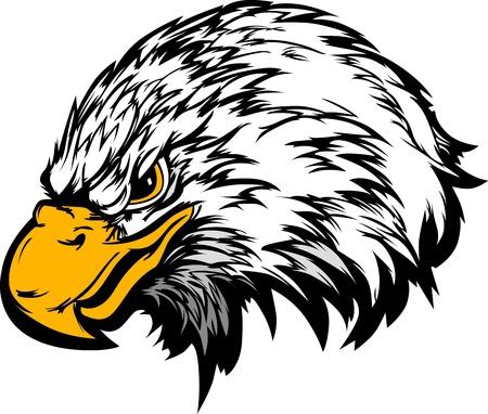 halcones: Águila cabeza Imagen vectorial mascota Gráfico