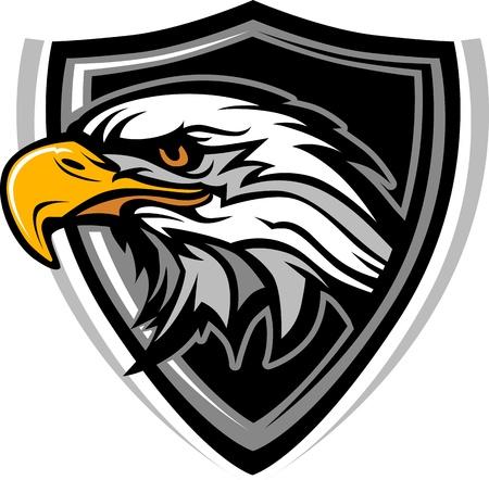 aigle: T�te d'Aigle Mascot image graphique