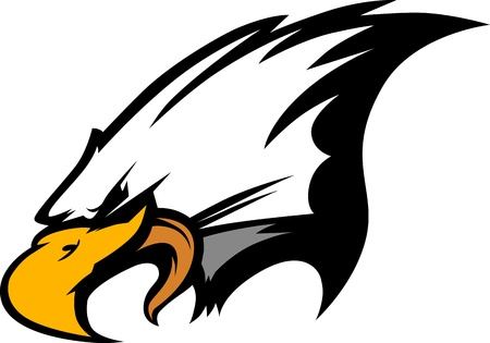 eagle head: Eagle Head Graphic Mascot Image