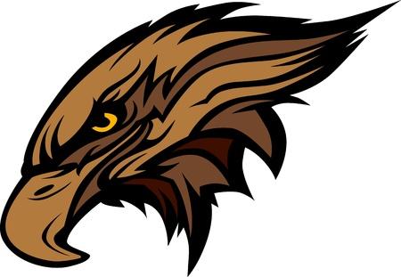 halcones: Halcón o halcón imagen de la cabeza mascota Gráfico Vectores