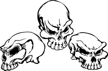 Group of 3 Graphic Vector Skull Images  Vector