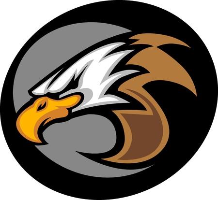 halcones: Mascota Gráfico Imagen vectorial de una cabeza de águila Vectores