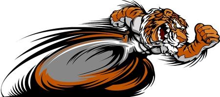 tigre caricatura: Tiger exceso de velocidad se ejecuta con las manos Ilustraci�n Vector Mascota