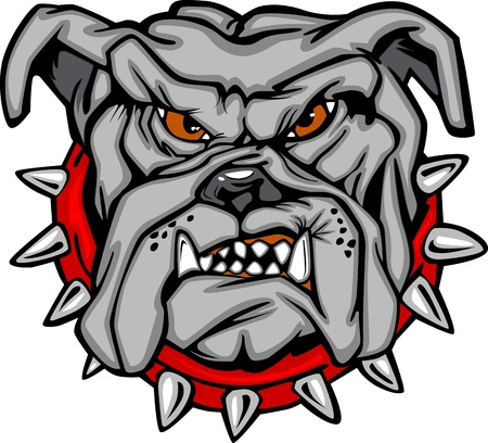 Cartoon Vector Image of a Bulldog Mascot Head Vector