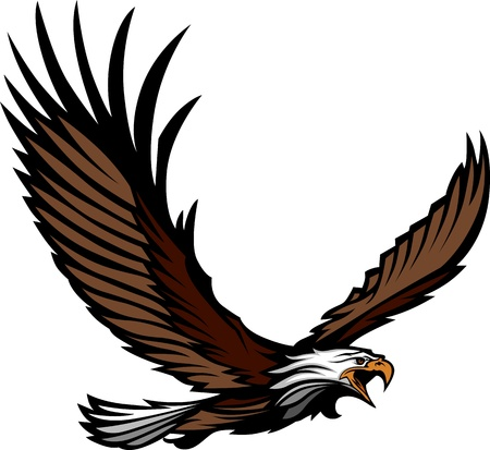 Graphic Mascot Image of a Flying Eagle with Wings Vector Illustration Vector