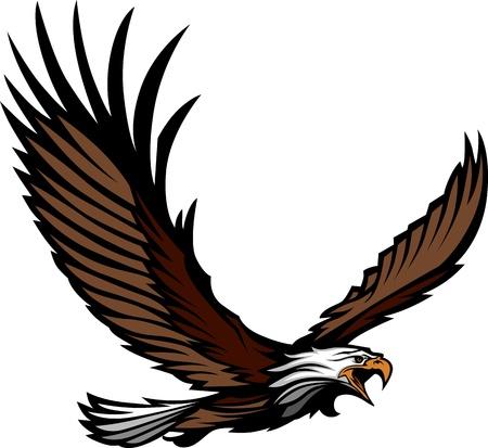 halcones: Mascot Gr�fico Imagen de un �guila que vuela con alas ilustraci�n vectorial