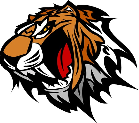 Tiger Head Graphic Team Mascot Image   Vector