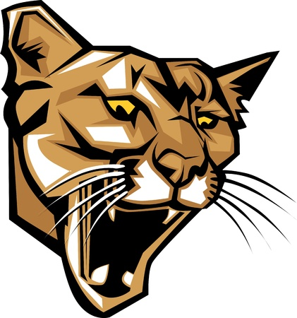 cougars: Graphic Vector Mascot Image of a Mountain Lion Head Illustration