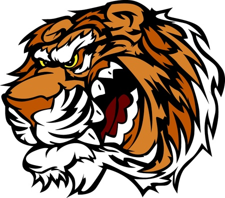 bengal: Cartoon Tiger Head Mascot Vector Image   Illustration