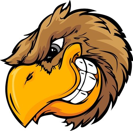deportes caricatura: Vector de dibujos animados mascota de la imagen de una cabeza de ave