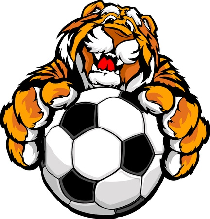 claws: Graphic Mascot Vector Image of a Friendly Tiger with Paws on a Soccer Ball