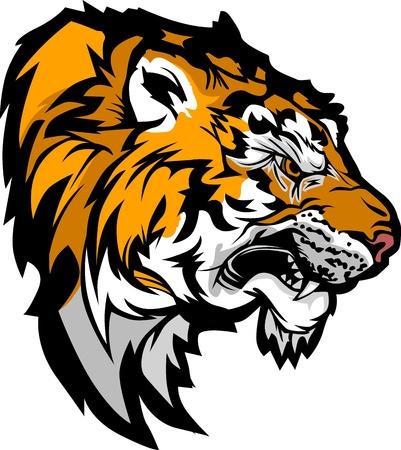 Graphic Mascot Profil Bild von einem Knurren Tiger Head Standard-Bild - 15085743