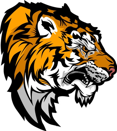 bengal: Graphic Mascot Profile Image of a Snarling Tiger Head  Illustration