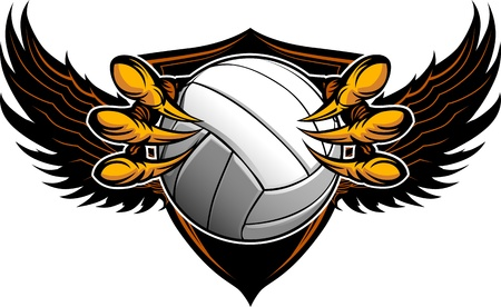 Graphic Image of a  Eagle Claws or Talons Holding a Volleyball Vector