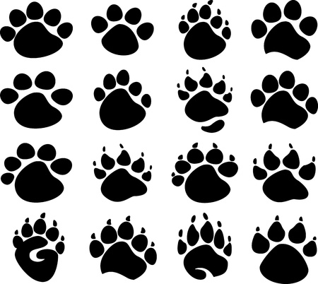 grizzly: Graphic Bear, Tiger, and Animal Paws or Claws Images  Illustration
