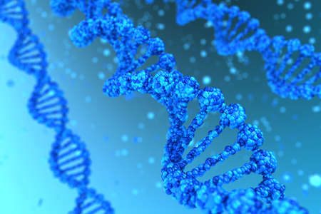 nucleic acid: Three DNA helix magnified - high quality render