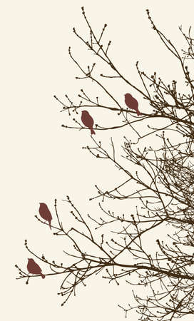 twigs: Vector image of the sparrows on the spring tree. Illustration
