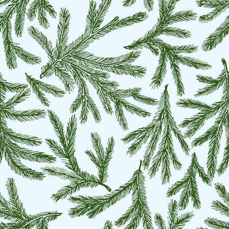 Vector pattern of the green spruce branches.