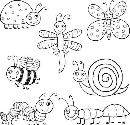 ladybird: Vector drawings of the different amusing insects.