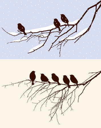 flocks: The birds on the tree in different seasons