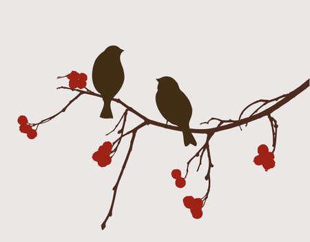 The birds on the mountain