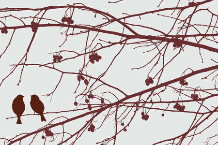 twigs: Silhouettes of the birds on the fruit tree branches Illustration