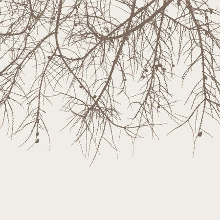 twigs: Silhouette of the pine branches Illustration