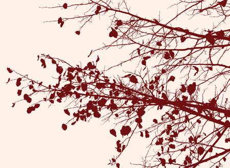 Takken van een lindeboom in de herfstseizoen Stock Illustratie