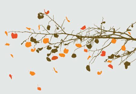 Takje van een lindeboom in de herfst