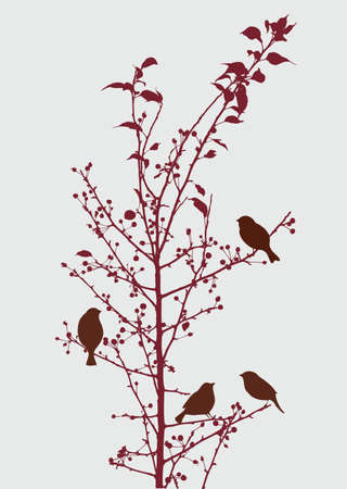 twigs: The birds on an autumn branch Illustration
