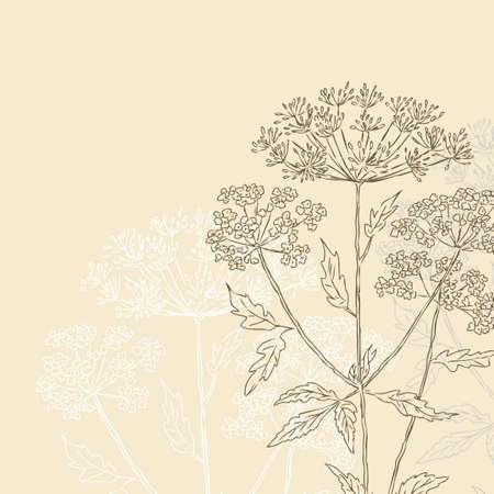 Vector image of a silhouettes of the umbrella grass Ilustração