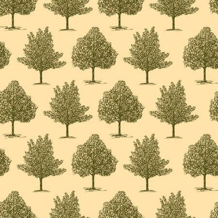 Patroon van de verschillende loofbomen
