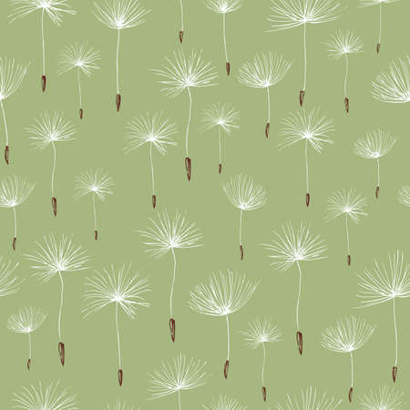 Pattern of the dandelions seeds
