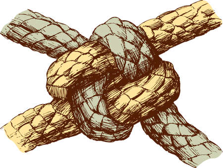 Vector drawing of a sea knot