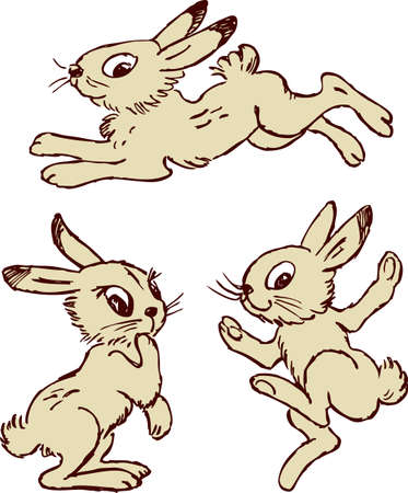 Vector images of the cartoon funny hares