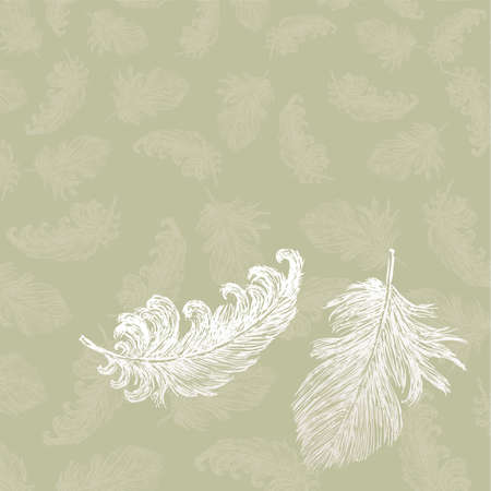Vector background of the birds feathers
