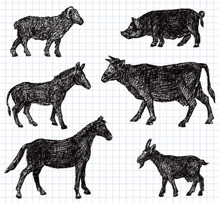 Vector sketches of the farm animals Illustration