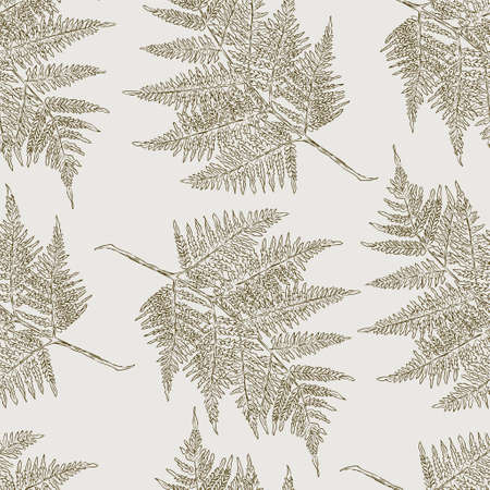 Vector background of the fern leaves