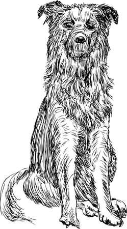 Sketch of a homeless dog